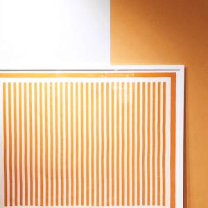 © Suzanne Kasler Interiors